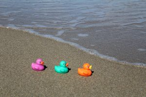 plastic ducks in a row