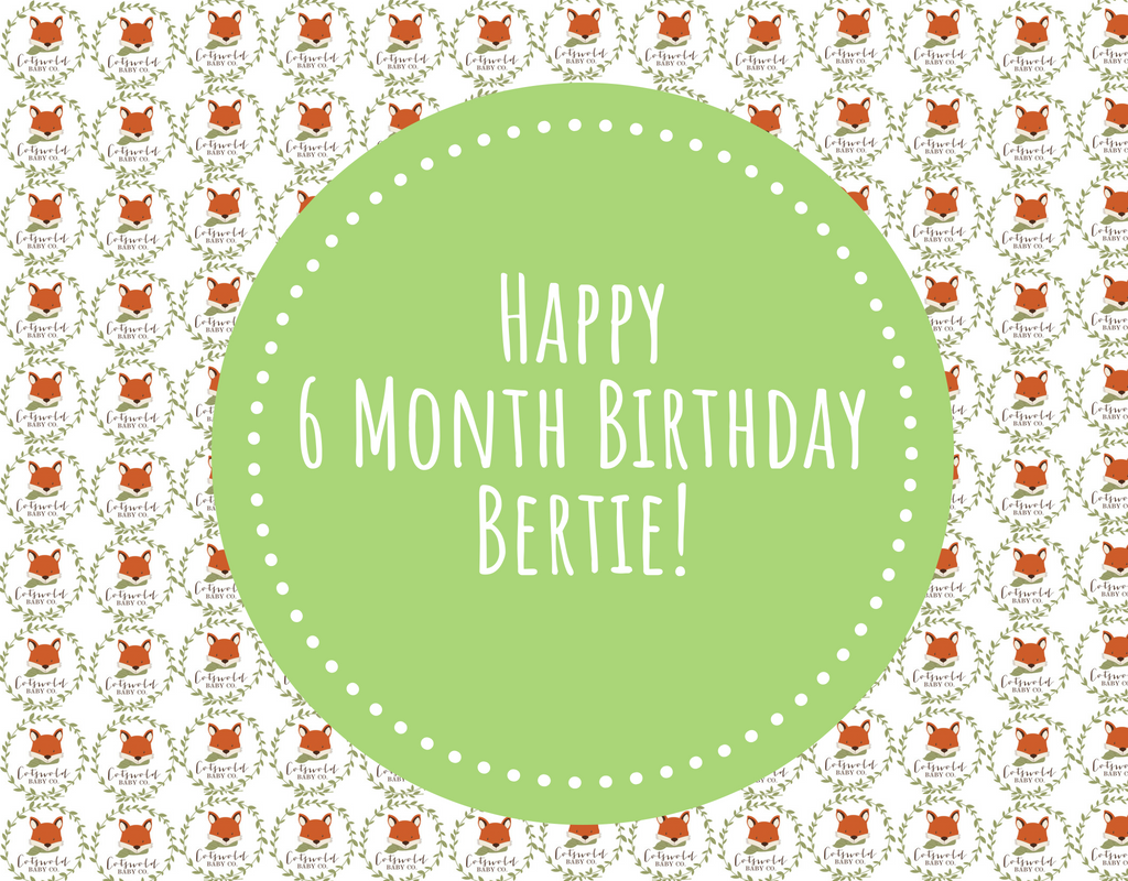 Happy 6 Month Birthday Bertie!