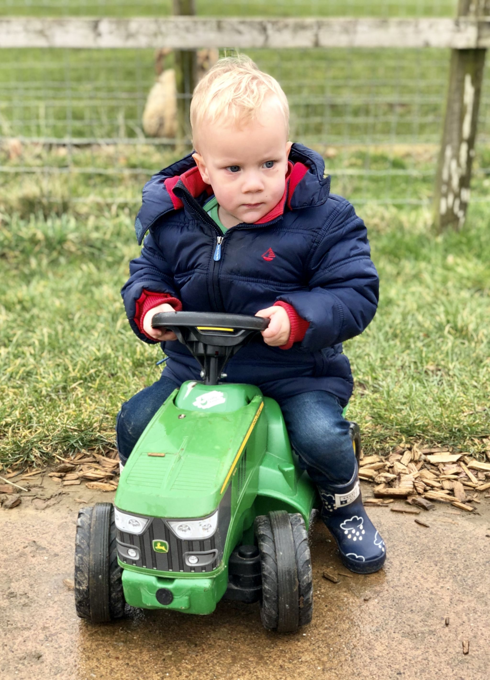 toddler riding on tractor at Cotswold Farm Park
