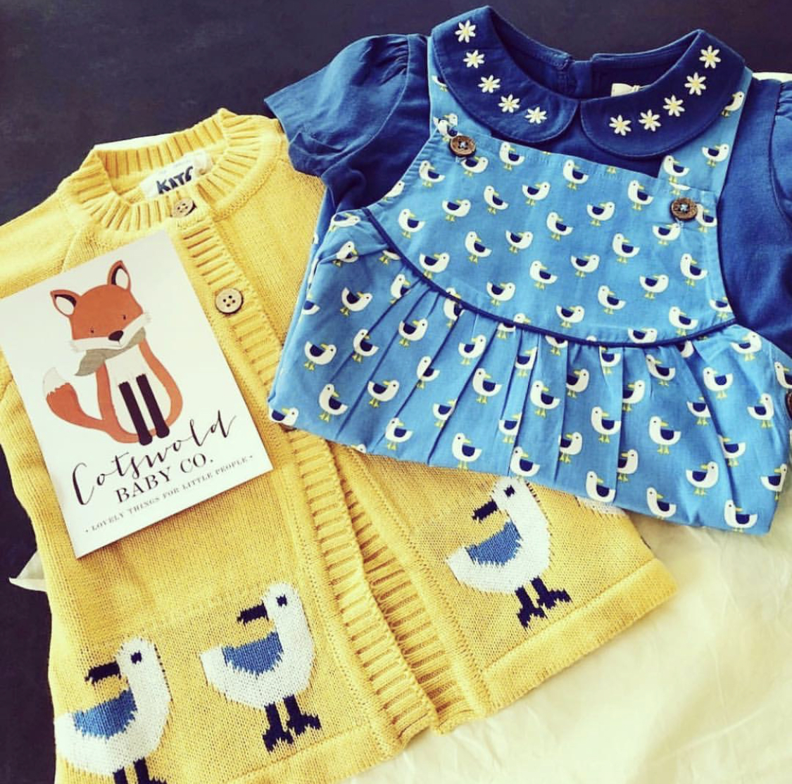Organic Cotton Seagull Outfit by Kite Clothing - Cotswold Baby Co